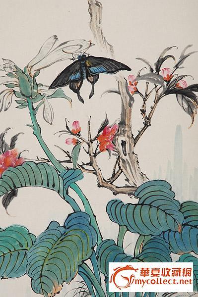 蝴蝶国画步骤视频