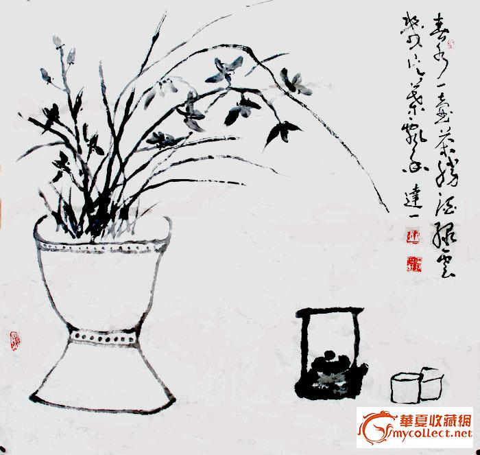 盆栽兰花铅笔手绘
