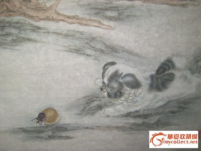 黄呈晋---工笔动物