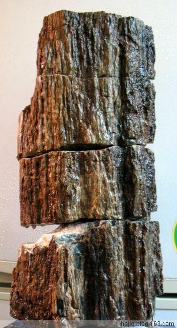 玛瑙化木化石_玛瑙化木化石价格