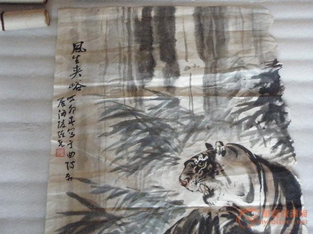 老虎-图2