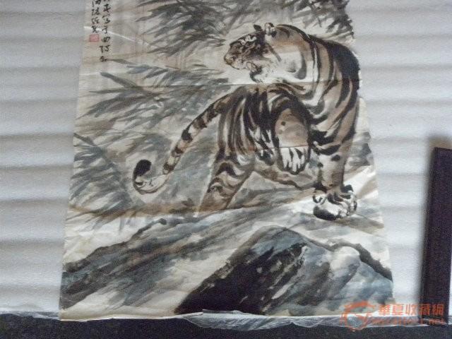 老虎-图3