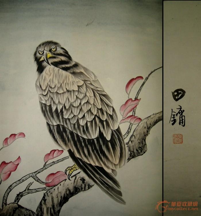 中国工笔画名家 田镛 工笔鹰