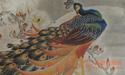 彩铅画 手绘孔雀
