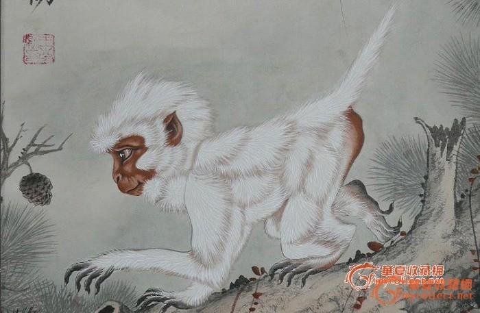 漂亮的工笔画 灵猴