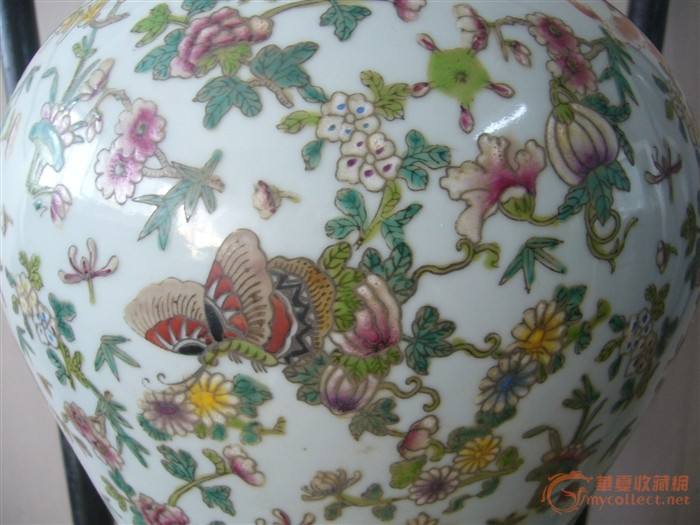 斗彩蝴蝶梅瓶图片