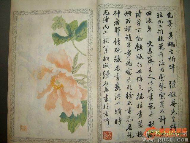 写生海棠图画法步骤