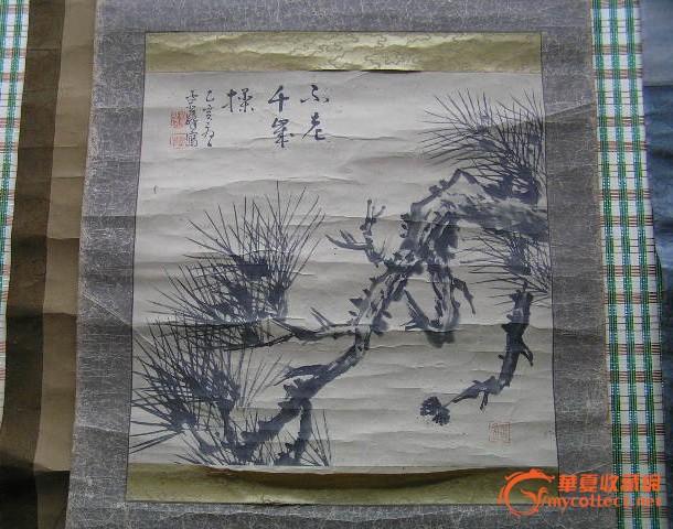 日本松树小品一幅