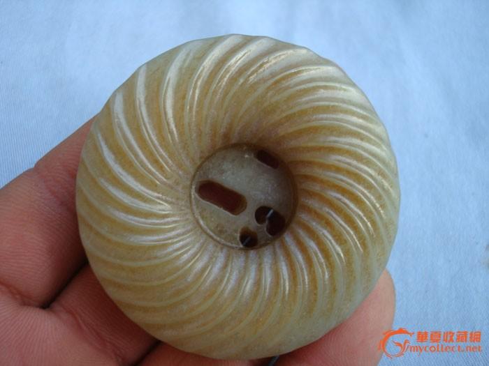 动物 海底 软体 700_525