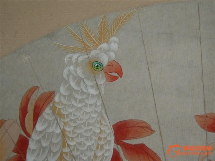 手绘老扇面 马晋 红叶鹦鹉