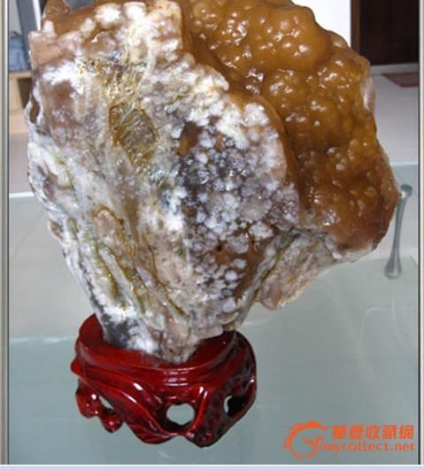内蒙阿拉善戈壁奇石 葡萄玛瑙---招财树