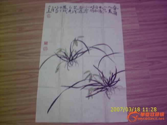 丁兰花手绘图片