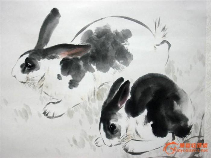 动物素描图片大全兔子
