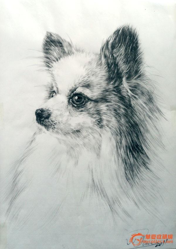 絹面寫實鋼筆畫(狗)