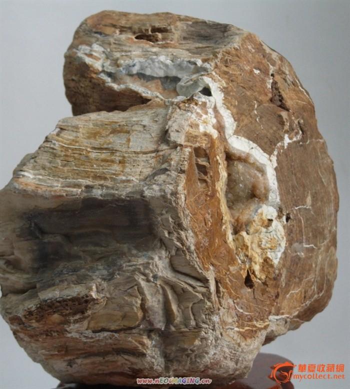 天然树化玛瑙带水晶洞