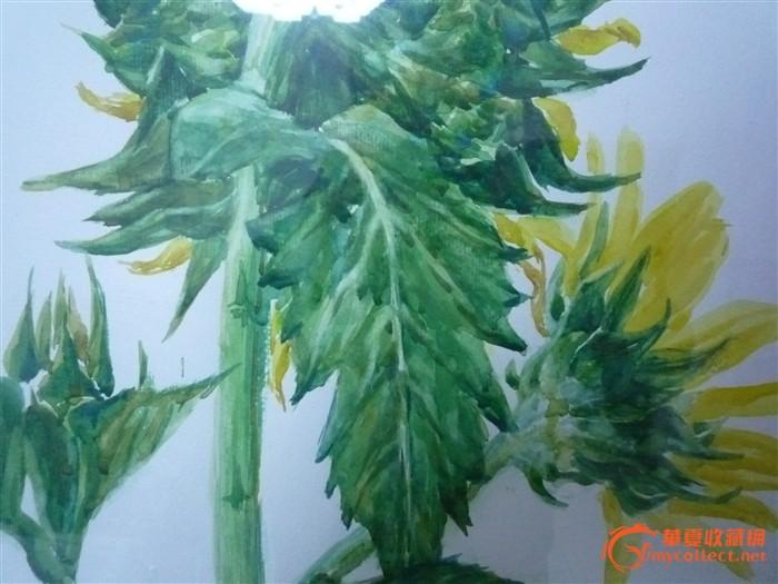 壁纸 花 盆景 盆栽 植物 桌面 700_525
